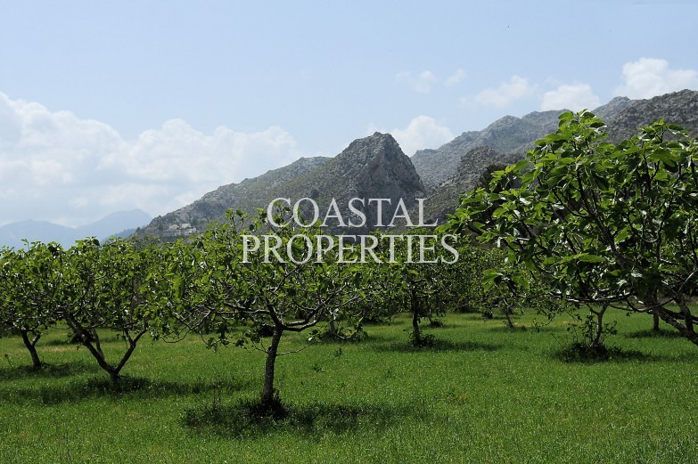 Property for Sale in Pollensa, Unique Country Estate Distributed Over Four Separate Buildings  Pollensa, Mallorca, Spain