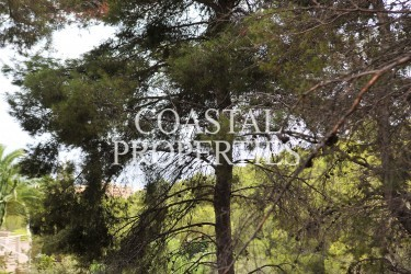 Property for Sale in Costa D'en Blanes,  South-East Facing Plot For Sale With Partial Sea Views Costa D'en Blanes, Mallorca, Spain