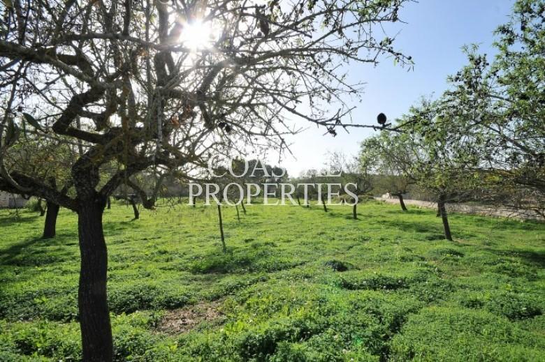 Property for Sale in Calva, Plot For Sale Near The Village Of Calvia, Mallorca, Spain