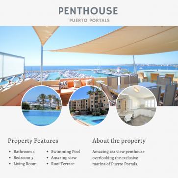 Penthouse Portals